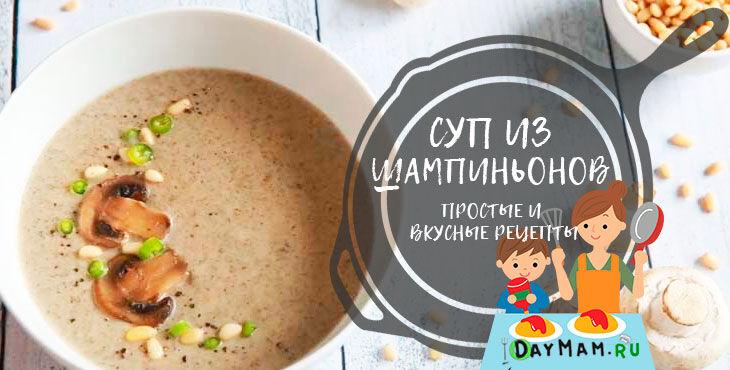 Грибной суп из шампиньонов по классическим рецептам